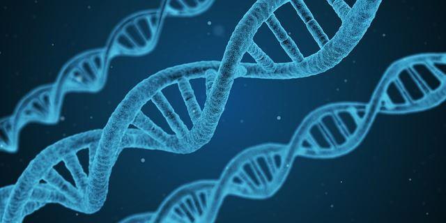 Genetica e cisti ovariche